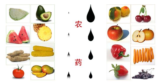 素材公社 图片素材 动物植物 蔬菜水果 > 椭圆形的橙子